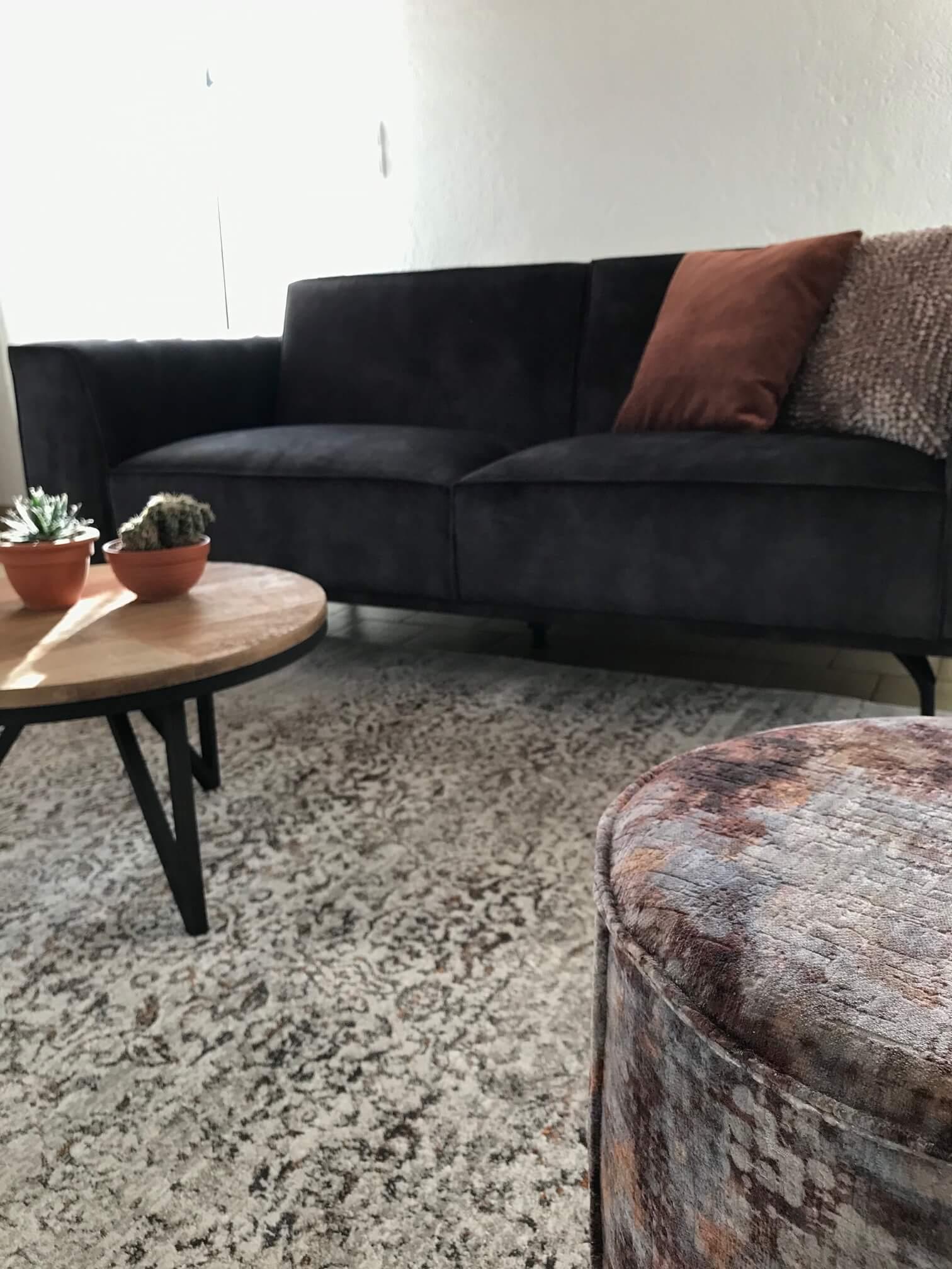 tapis fauteuil salon canapé